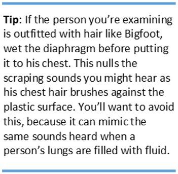 hair noise