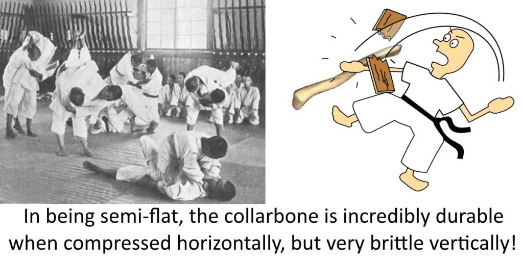 breaking collarbones